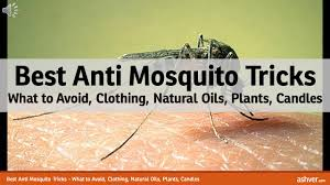 best anti mosquito tricks what to avoid clothing natural oils