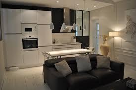 cuisine americaine appartement appartement 3 pièces et fonctionnelle cuisine ouverte sur le salon