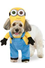 halloween costumes minion brand new despicable me minion bob pet costume ebay