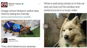 Cute Dog Memes - i can has cheezburger dog memes funny animals online cheezburger