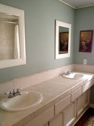 Light Blue Bathroom Ideas by Bathroom Terrific Design For Remodelling Bathroom With Light Blue