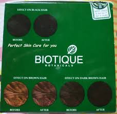 Black Hair Color Chart Biotique Bio Henna Fresh Powder Hair Color Product Review