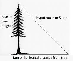 2 2 determining tree height forest measurements an applied approach