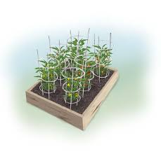 Cucumber Spacing On Trellis Sweet And Spicy 4 X 4 Foot Pepper Garden Bonnie Plants