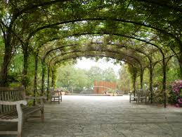 botanical gardens in san antonio texas a truly beautiful place