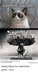Grumpy Cat Meme Valentines Day - valentine s day ehh i wish you were here funny valentine s day meme