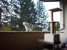 balkon katzensicher machen balkon katzen sicher katzen forum