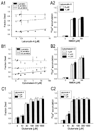 distinct roles of synaptic and extrasynaptic nmda receptors in