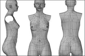 Female Body Reference For 3d Modelling Face Edge Flow Maya Google Search 01 Pinterest Maya