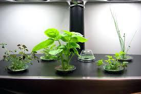 grow light indoor garden indoor garden kit with light fooru me