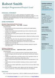 Best Resume For It Professional by Resume For It Professional Samples Csat Co