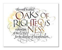 timothy botts prints isaiah 61 3 oaks of righteousness biblical