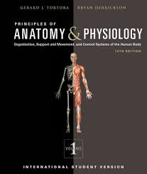 Essentials Of Human Anatomy And Physiology Book Online Online Anatomy And Physiology Book Anatomy And Physiology Class