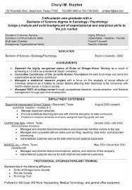 substitute description for resume sales