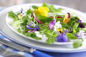 flowers edible where to buy edible flowers recipes with edible flowers