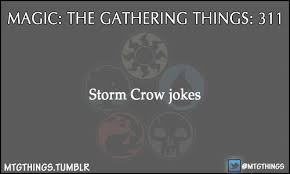 Storm Crow Meme - magic puns
