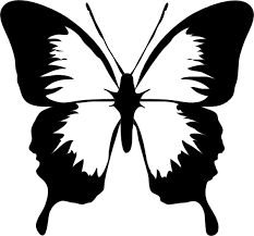 black and white butterfly clip at clker com vector clip