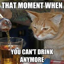 Drunk Cat Meme - that moment when you can t drink anymore drunk cat quickmeme