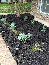list of texas native plants central texas front yard garden using black hardwood mulch and