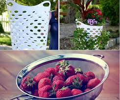Diy Strawberry Planter by Laundry Basket Turned Strawberry Planter Home And Gardening Ideas
