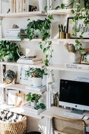 black shelves ideas plants plant shelves and shelves