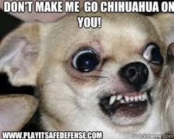 Chihuahua Meme - don t make me go chihuahua on you www playitsafedefense com mean