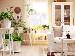 Home Plant Decor by Decorations Modern White Living Room Decor Ideas With Minimalist