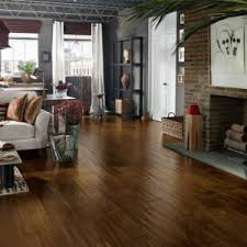 flooring modern interior home ideas with best flooring for dogs