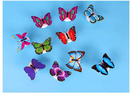 colourful butterfly led light inspire box