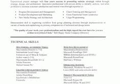 It Project Manager Resume Template Download Resume Template For Project Manager