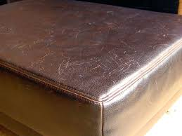 How To Fix Scratches On Leather Sofa Cat Scratched Leather Furniture How To Fix Scratches Light Sofa