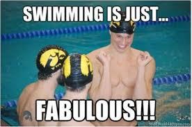 Swimming Pool Meme - swimming pool memes silly bunt