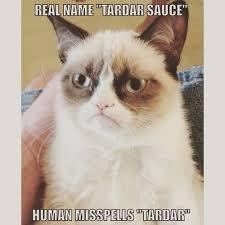 Tardar Sauce Meme - grumpy cat memes grumpy cat merchandise on we heart it