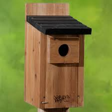 Cool Bird House Plans by Eastern Bluebird House Plans Free