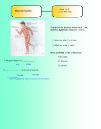 skin covering your body ppt download