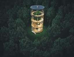 stunning tubular glass house built around tree bored panda