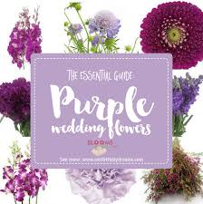 wedding flowers guide your go to purple wedding flowers guide on confetti day dreams