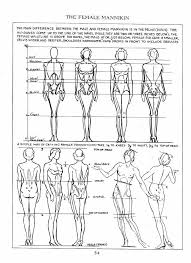 Anatomy Of Human Body Sketches 56 Best Anatomy Refrences Images On Pinterest Anatomy Reference