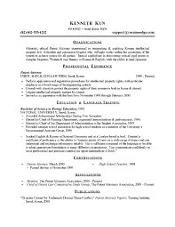 Resume For All Jobs by Sample Resume For Attorney Free Resumes Tips