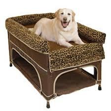 Bunk Bed For Dogs Bunk Beds Pictures Reference