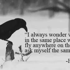 harun yahya quote on the bird s will to stay in the same place