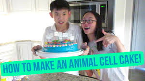 how to make an animal cell cake youtube