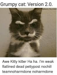 Memes Of Grumpy Cat - 25 best memes about grumpy cats grumpy cats memes