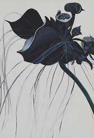 black orchid flower black orchid painting by catt kyriacou