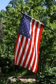 Flag Hanging American Flag With Foliage In The Background Picture Free