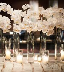 Tall Glass Vase Flower Arrangement Wedding Table Decor Tall Glass Vases Are Lush With White Orchids