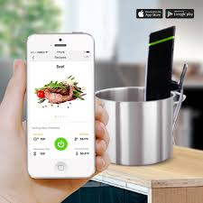 dissna wifi machine precision slow cooker sous vide everything at