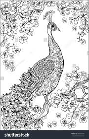 coloring book pages peacock flower garden stock vector 359253437