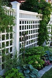 Garden Fence Ideas Design Lattice Garden Fence Ideas Hydraz Club