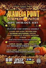 alameda point pumpkin patch 2171 monarch st alameda
